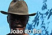 Music of Salvador, Bahia, Brazil: João do Boi